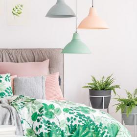 Les 5 meilleures plantes à mettre dans sa chambre