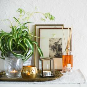 La recette naturelle pour faire son parfum d'intérieur soi-même
